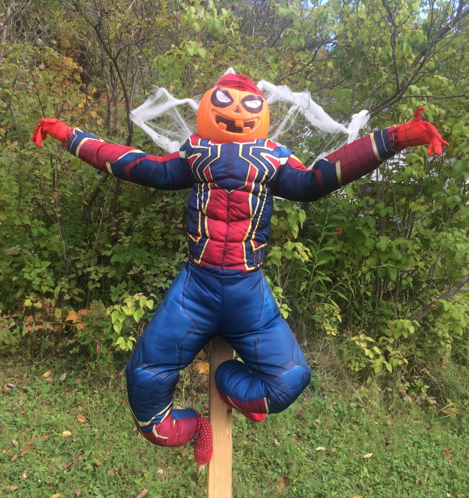 Spidey at 442 Stage Rd