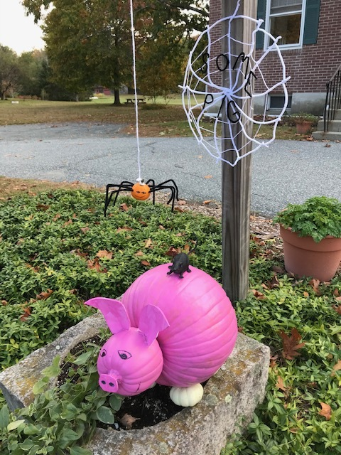 Charlotte's Web at the Meriden Library  at 22 Bean Rd